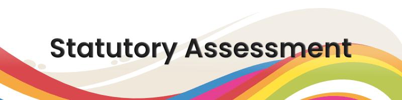 Statutory assessment